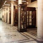 I musei di UniTo / Il sistema museale dell'Ateneo