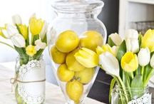 Spring Decor / We dress for the season, so let's decorate for the season! / by Safavieh Official