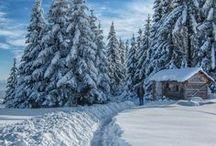 winter / by John Kerr