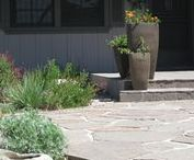 California Native Permeable Yard / Replacing their lawn with drought tolerant plants produced a lot of environmental benefits. Adding the permeable flagstone path added great surfaces from one point to the next while looking sharp.