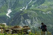 Hiking Recommendations from Travel Bloggers / Check out these recommended hikes tried and tested by travel bloggers.