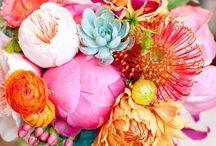 Fabulous Florals / by Antonia Krajicek