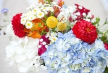 Flowers / by Hannah Allen