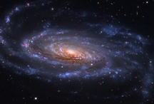 Great Big Universe / by Win-Win Farm