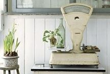 Vintage Scale Collection / by Joanna Meyer