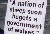 What makes me concerned / It appears to me this country is being taken over by wolves wearing sheep's clothing and pretending to be good Christians.  This deeply concerns me.   / by Mary Rose