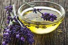 oils and herbs {Nuta} / Óleos e ervas