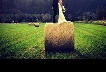 Wedding Bells / by Roslyn Pittman