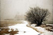 Winterscapes / There is a peaceful silence and stillness in the winter air ~ / by Carmen Hansen Schwitzer