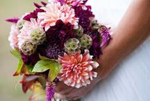 Wedding Flowers & Decor / Bring on the pretty. / by AMP