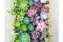 Outside Home Decor / Décor For Your Front Porch, Back Porch and Yard / by Hannah Graham