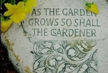 Gardening / by Wayfaring Stranger