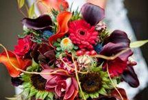 Mock Wedding Fall / by Bride & Groom Planner Christy Schimpf