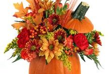 Fall and Thanksgiving Flowers / September, October, November - the crisp autumn days of apple-picking, hay rides, colorful leaves, and holidays of love, appreciation, fun, and thankfulness!