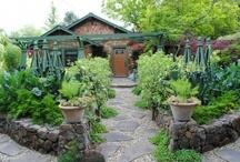 Gardening: Edible Landscaping / by Wayfaring Stranger