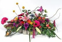 Sympathy and Remembrance / Beautiful arrangements and gifts for sympathy, funerals, and memorials. Ideas for unique custom tributes to honor, remember, and celebrate those who have passed on, and convey comfort and your loving support to those who remain.