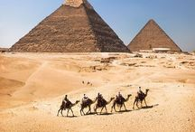 Travel: Egypt / by Melana Orton