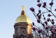 Notre Dame iPhone-ography / What does campus look like for those who see it every day? Our Internal Communications department is running a contest open to faculty and staff to see the iPhone photos they take each day. Favorite and comment on the images to tell us your favorite!