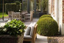 Backyard Ideas / Ideas for a relaxed and fun backyard!