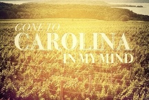 The Lowcountry & The South / Favorite things in, around, & about The South and in particular, The Lowcountry.