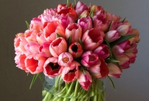 Make Arrangements / ~beautiful bouquets~ / by Nicki Boettcher