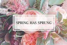 // Spring has Sprung //