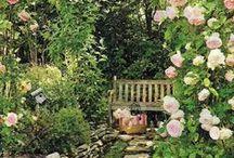garden ideas - giardini / Gardening ideas and inspiration