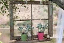 my garden...SOMEDAY!