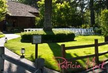 Groezinger Estate / NVCE Events at Groezinger Estate / by Napa Valley Custom Events  LLC