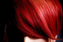 Reds / Beautiful Reds / by Anthony James