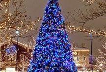 Blue Christmas / by Carol Lilley