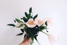 blooming. / flower arrangements + bouquets