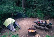 CAMPING / by Erica America