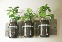 mason jar ideas & uses. / Take those empty mason jars in the cupboard and make something create with it! / by Mom Spark // MomSpark.com