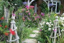 In the Garden / by Hilary Frazier