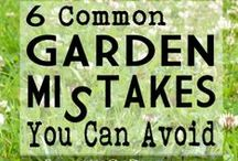 Gardening / Great ideas and tips for home gardening. / by Monica McPherrin