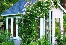 Yard / Garden