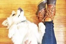 Best Friends / Dogs love L.L.Bean. And we love dogs. #LLBeanPets