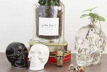 Home Decor / Our bottles add a special touch to any space. / by Crystal Head Vodka