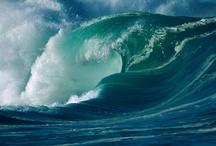 2. Nature//Seas & oceans//Mares & océanos.  / El agua salada, de mares y oceanos, desde las aguas cristalinas de playas tropicales hasta los hielos de los polos terrestres, y desde el interior de las aguas hasta las grandes olas.  / by Fabiola Sandoval