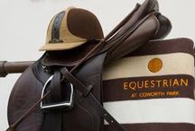Equestrian Adventures / With beautifully bred, well trained and immaculately presented horses available for guests and local residents to ride across our 240 acre private estate.  http://bit.ly/2b13096