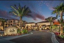 San Paseo - Phoenix, AZ / 8050 S. Pointe Parkway West, Phoenix, AZ 85044 Tel: 480.477.9598 Rent: $979 - $1,725 Bedrooms: 1 - 3 Bathrooms: 1 - 2