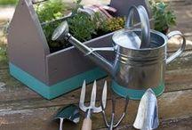 Gardening & Landscaping / by Yolanda Eriksen Funk