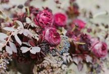 BERRY / berry colour wedding inspiration