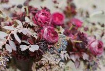 BERRY / berry colour wedding inspiration