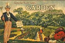 Garden / by CreatedByAliciaAnn