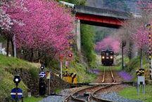 Railways / Adventurous! #train #ride #railway