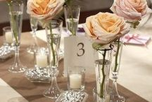 Frugal Wedding Ideas / Frugal Wedding | Frugal Wedding ideas | Frugal Wedding DIY | Frugal Wedding Tips | Frugal Wedding Reception | Frugal Wedding Decor | Frugal Wedding Favors | Frugal Wedding Centerpieces