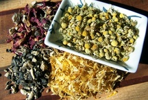 Holistic Health & Beauty / Natural, herbal, DIY remedies, beauty ideas, holistic modalities and how to's...