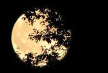 The Full Moon / La bella luna. Which moon is your favorite?